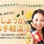 「極み生姜の力」200