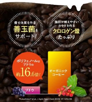 バターコーヒーパウダー「KETOSLIM (ケトスリム)」オーガニックコーヒー